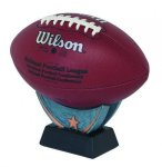 Signature Series -Ball Holders Excellence Resin Trophy Awards